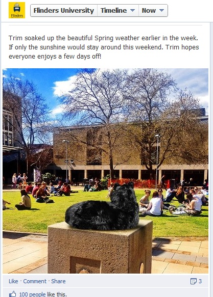 Trim the cat, Flinders University